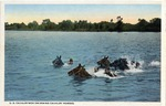 Fort Brown U.S. Cavalry men swimming cavalry horses by Robert Runyon