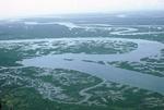 Near mouth of Saigon River by Cayetano E. Barrera