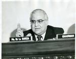 Photograph of Kika de la Garza speaking at a roundtable